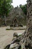 Mayan ruins at coba,cancun,mexico Royalty Free Stock Photos