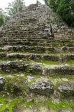 Mayan ruins at coba,cancun,mexico Stock Photography