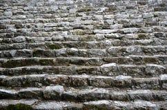 Mayan ruins in Coba Stock Photos