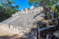 Mayan Ruins in Coba, Mexico Royalty Free Stock Photo