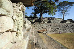 The Mayan ruins of Copan Royalty Free Stock Image