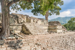 The Mayan ruins in Copan Ruinas, Honduras. UNESCO world heritage site, famous Mayan site in Copan Ruinas, Honduras, Old stone buildings stock photography