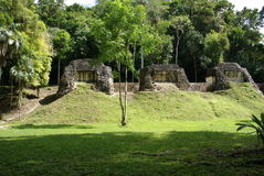 Mayan ruins in Guatemala Stock Images