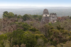 Mayan ruins in jungle Tikal Royalty Free Stock Photography