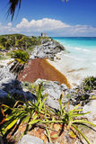 Mayan ruins in Mexico. Tulum, Mexico, The mayan ruins royalty free stock image