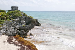 Mayan Ruins Overlooking Ocean. Mayan ruins on a cliff overlooking the Atlantic Ocean with seaweed on the beach Royalty Free Stock Photography