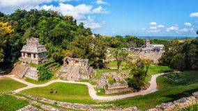 Mayan ruins in Palenque, Chiapas, Mexico Royalty Free Stock Photography
