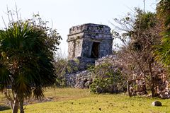 Mayan Ruins in a Park at Tulum Royalty Free Stock Image