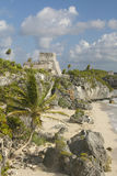 Mayan ruins of Ruinas de Tulum (Tulum Ruins) in Quintana Roo, Mexico. El Castillo is pictured in Mayan ruin in the Yucatan Peninsu Stock Images