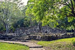 Mayan Ruins in San Gervasio. Cozumel, Mexico stock image