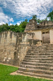 Mayan Ruins of Tikal. The Mayan Ruins of Tikal in Belize stock photography