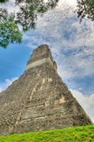 Mayan Ruins of Tikal. The Mayan Ruins of Tikal in Guatemala stock image