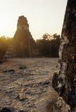 Mayan ruins- Tikal, Guatemala Stock Photography