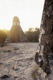 Mayan ruins- Tikal, Guatemala Stock Image