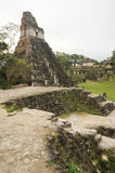 The Mayan ruins of Tikal Royalty Free Stock Image
