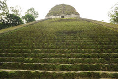 The Mayan ruins of Tikal. On Guatemala Stock Images