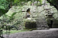 The Mayan ruins of Tikal. On Guatemala Royalty Free Stock Photo