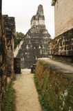 The Mayan ruins of Tikal Stock Photos