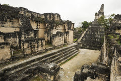 The Mayan ruins of Tikal Royalty Free Stock Photos