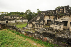 The Mayan ruins of Tikal Royalty Free Stock Photo