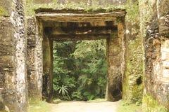 The Mayan ruins of Tikal Royalty Free Stock Photo