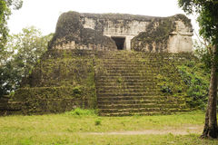 The Mayan ruins of Tikal Stock Images
