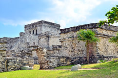 Mayan ruins - Tulum Royalty Free Stock Photography
