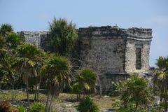 Mayan Ruins Stock Image