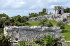 Mayan ruins Tulum Mexico. Remains or ancient Mayan ruins at Tulum, Mexico royalty free stock images