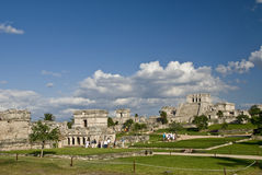 Mayan Ruins at Tulum Mexico Royalty Free Stock Image