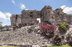 Mayan ruins at Tulum Mexico. Near Couzimel Stock Images