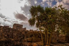 The Mayan ruins in Tulum, Mexico, Riviera Maya, Yucatan. Tulum was one of the last cities built and inhabited by the Maya. The Mayan ruins in Tulum, Mexico. The Royalty Free Stock Images