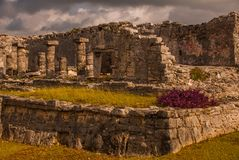 The Mayan ruins in Tulum, Mexico, Riviera Maya, Yucatan. Tulum was one of the last cities built and inhabited by the Maya. The Mayan ruins in Tulum, Mexico. The stock photo