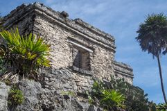 Mayan Ruins in Tulum. Old mayan site in the Mexican town of Tulum, Quintana Roo royalty free stock photography