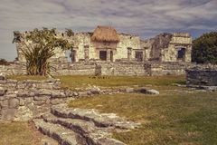 Mayan Ruins At Tulum. Side view of the remains of a small Mayan temple in the Tulum complex in Mexico taken at sunset royalty free stock images