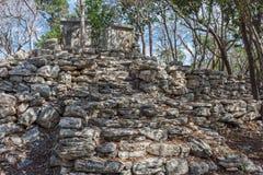 Mayan Ruins 2 Royalty Free Stock Image