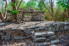 Mayan Ruins 6 Royalty Free Stock Photography