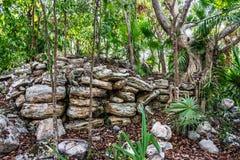 Mayan Ruins 3 Royalty Free Stock Photo