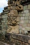 Mayan ruïnes van Copan in Honduras Stock Afbeeldingen