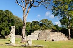 Mayan ruïnes van Copan in Honduras Stock Foto's