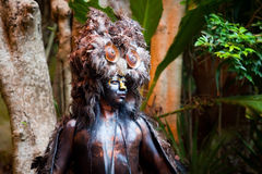Mayan Shaman in the Xcaret Show in Mexico royalty free stock photo