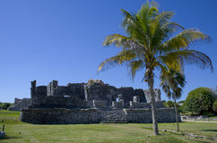 Mayan stad, Tulum Fotografering för Bildbyråer