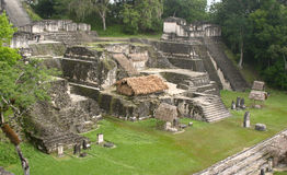 Mayan stairs. Tical maya site over green grass and tropical jungle royalty free stock photos