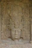 Mayan standing stones in Quirigua, Guatemala Stock Images