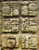 Mayan stone carved writing icons Royalty Free Stock Images