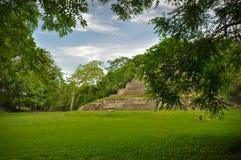 Mayan Tempel Royalty-vrije Stock Foto
