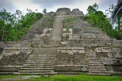 Mayan Tempel Stock Foto