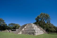 mayan tempel Royaltyfri Fotografi