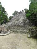 Mayan tempel stock foto's