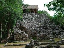 Mayan tempel stock afbeeldingen